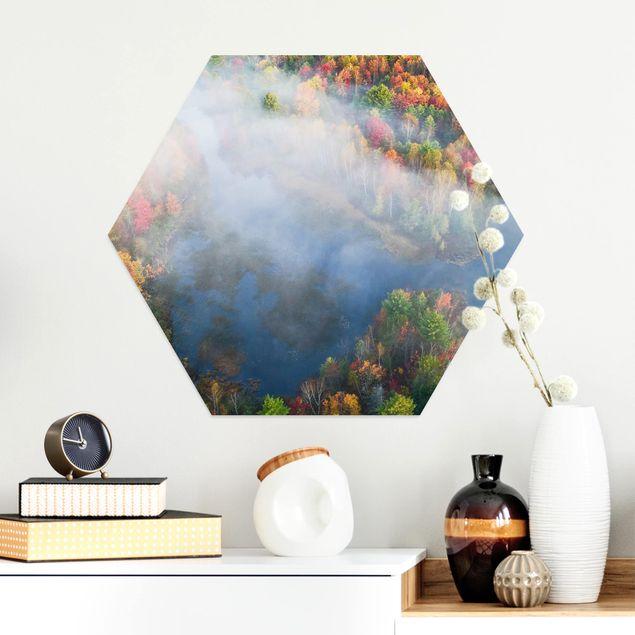 Hexagon Bild Alu-Dibond - Luftbild - Herbst Symphonie