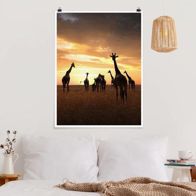 Poster - Giraffen Familie - Hochformat 3:4