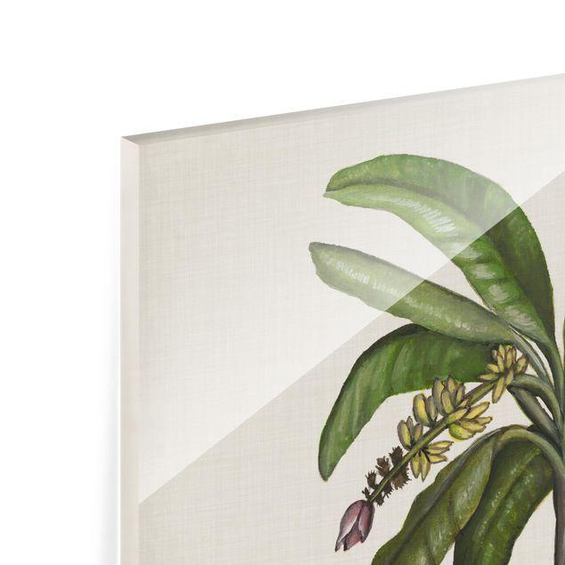 Glas Spritzschutz - Britische Palmen II - Quadrat - 1:1