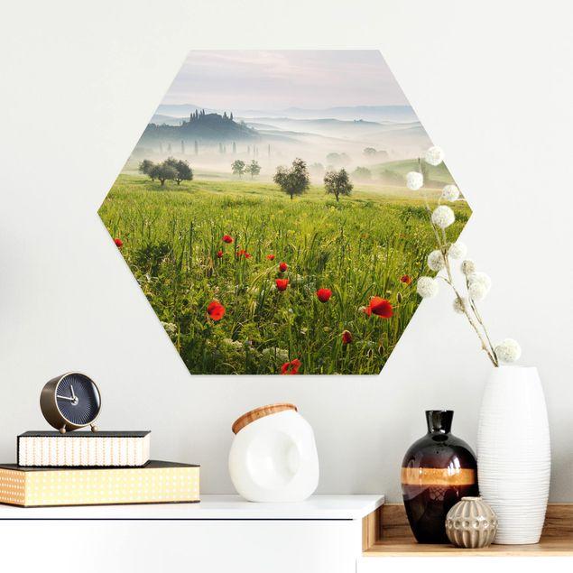 Hexagon Bild Alu-Dibond - Toskana Frühling