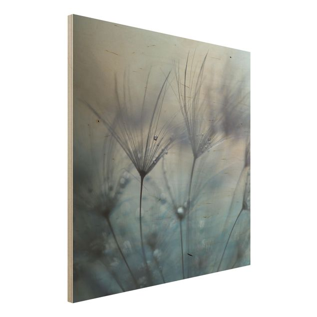 Holzbild - Blaue Federn im Regen - Quadrat 1:1
