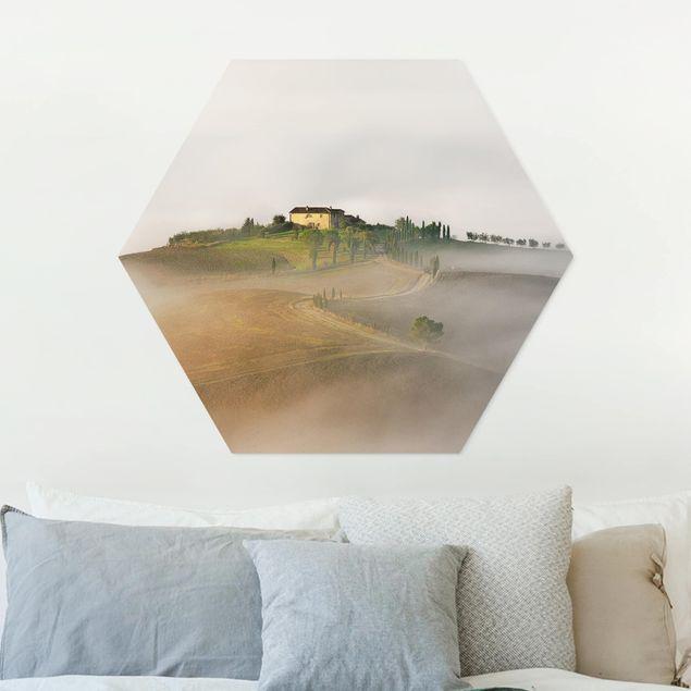 Hexagon Bild Forex - Morgennebel in der Toskana