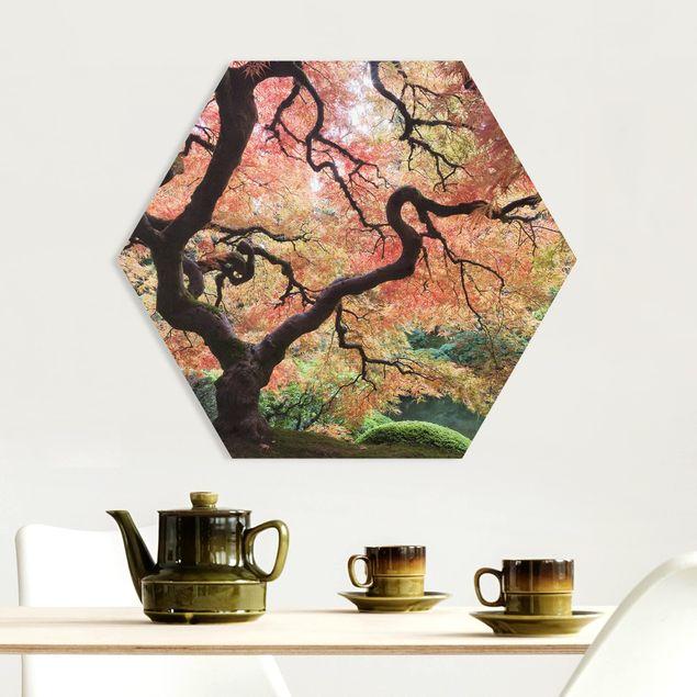 Hexagon Bild Forex - Japanischer Garten