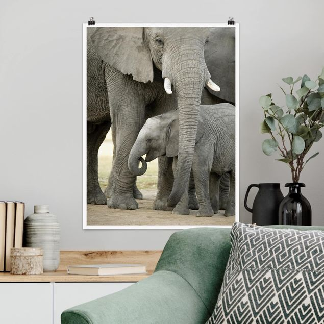 Poster - Elefantenliebe - Hochformat 3:4