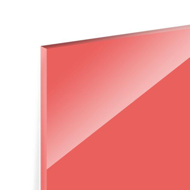 Glas Spritzschutz - Vermillion - Querformat - 4:3