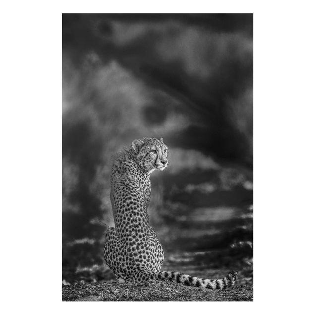 Forex Fine Art Print - Gepard in der Wildness - Hochformat 3:2