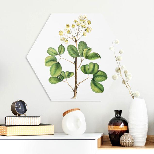 Hexagon Bild Forex - Laubwerk mit Blüten IV