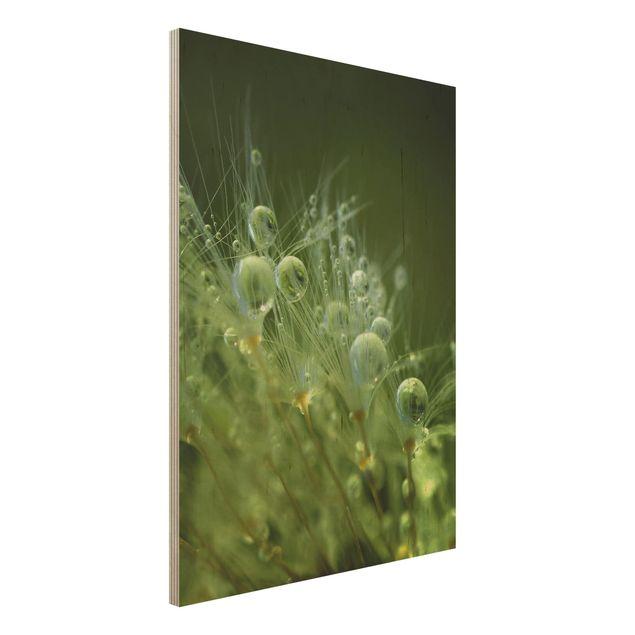 Holzbild - Grüne Samen im Regen - Hochformat 4:3