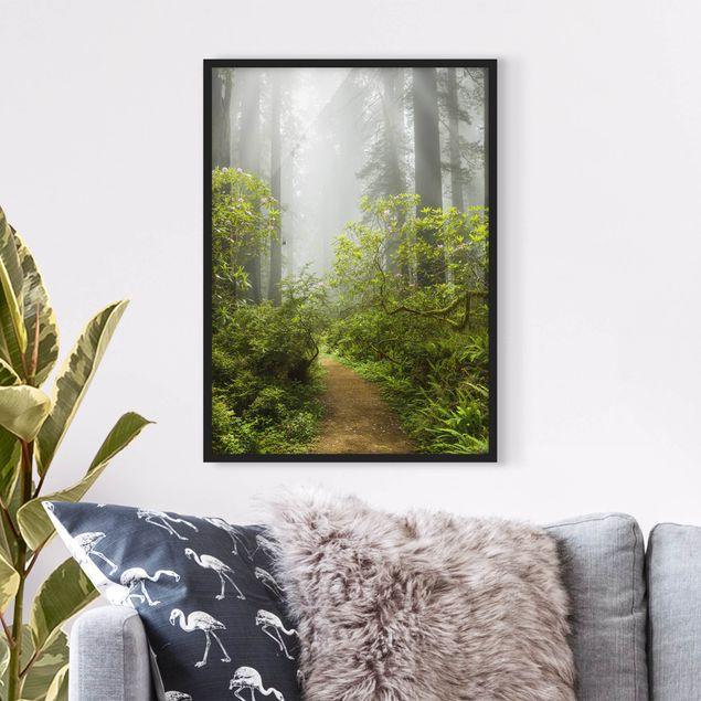 Bild mit Rahmen - Nebliger Waldpfad - Hochformat 3:4