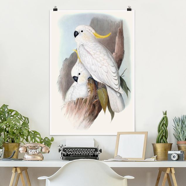Poster - Pastell Papageien III - Hochformat 3:2