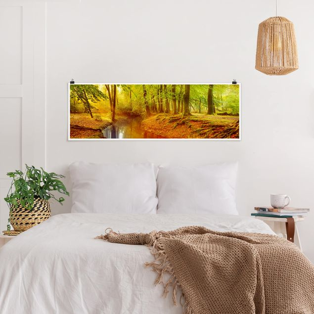 Poster - Herbstwald - Panorama Querformat