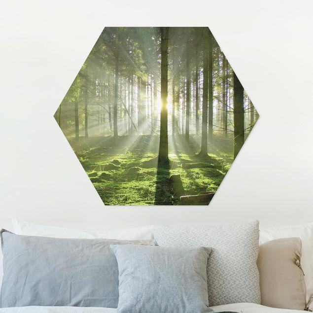 Hexagon Bild Alu-Dibond - Spring Fairytale