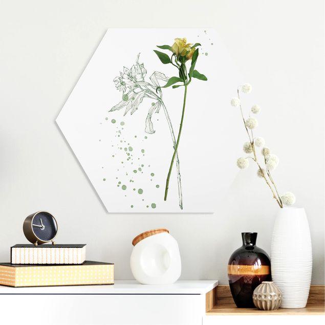Hexagon Bild Forex - Botanisches Aquarell - Lilie