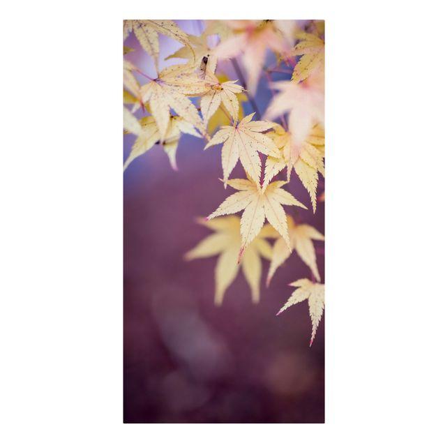 Leinwandbild - Herbstlicher Ahorn - Hochformat 1:2