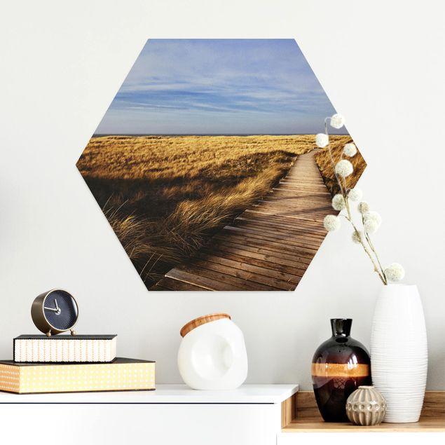 Hexagon Bild Alu-Dibond - Dünenweg auf Sylt