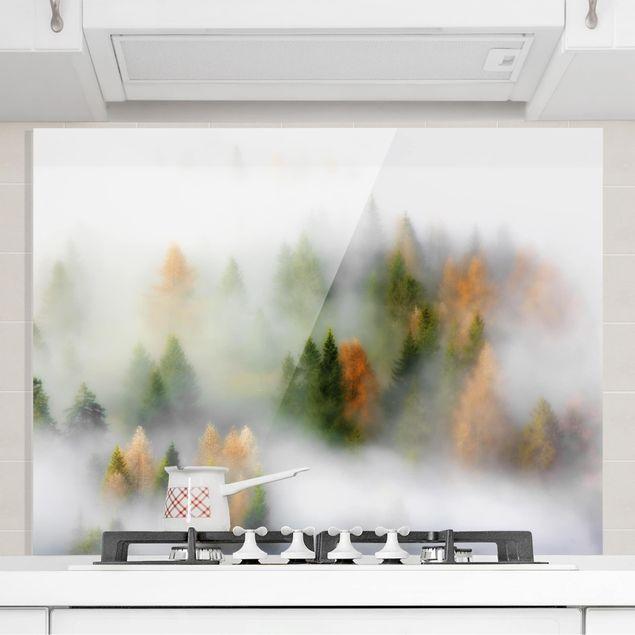 Glas Spritzschutz - Nebelwald im Herbst - Querformat - 4:3