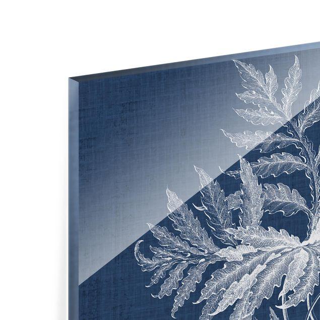 Glas Spritzschutz - Denim Pflanzenstudie IV - Quadrat - 1:1