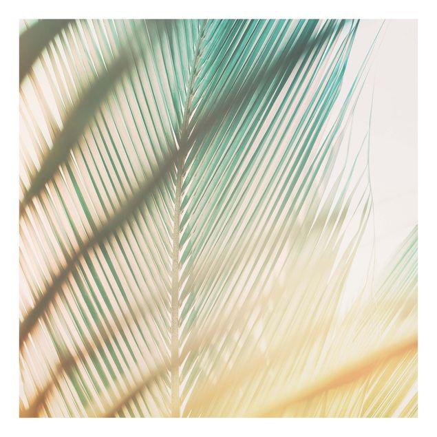 Glas Spritzschutz - Tropische Pflanzen Palmen bei Sonnenuntergang II - Quadrat - 1:1