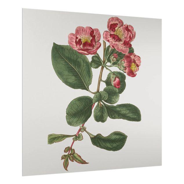Glas Spritzschutz - Florale Schmuckstücke I - Quadrat - 1:1