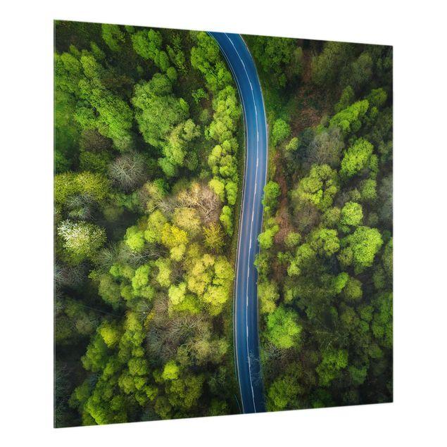 Glas Spritzschutz - Luftbild - Asphaltstraße im Wald - Quadrat - 1:1