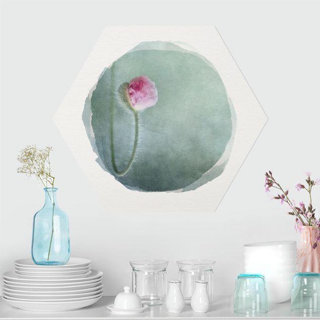 Hexagon Bild Forex - Wasserfarben - Blüte in Rosa