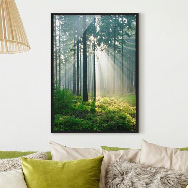 Bild mit Rahmen - Enlightened Forest - Hochformat 3:4