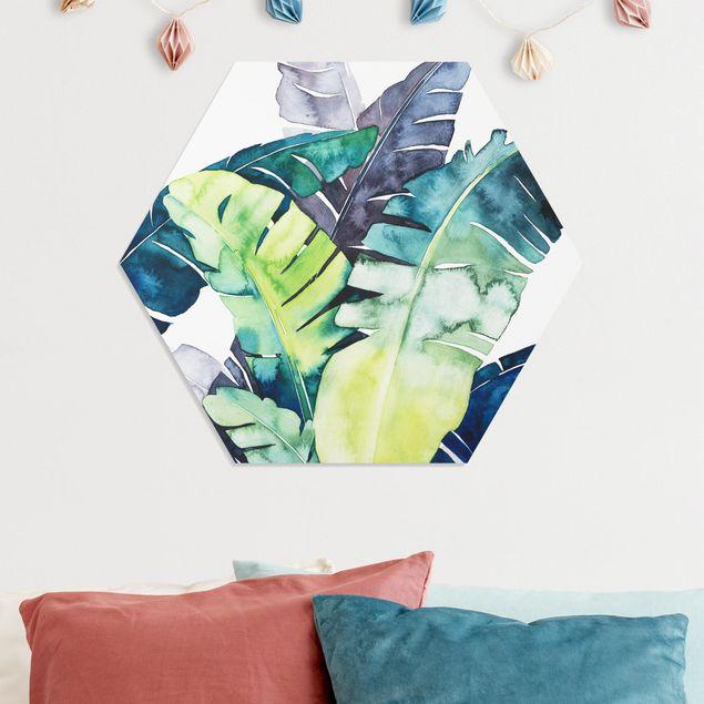 Hexagon Bild Forex - Exotisches Blattwerk - Banane