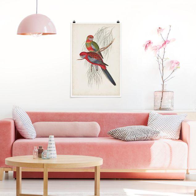 Poster - Tropische Papageien III - Hochformat 3:2