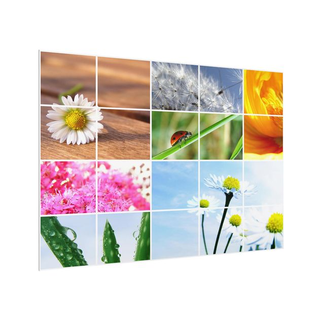Glas Spritzschutz - Spring Impression - Querformat - 4:3