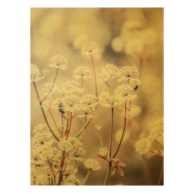 Leinwandbild Gold - Federleichte Wildblumen - Hochformat 3:4