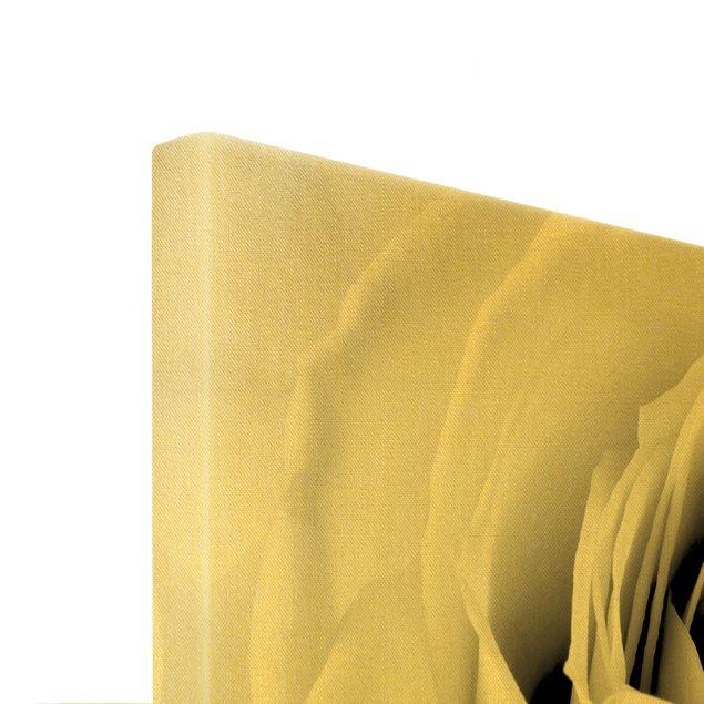 Leinwandbild Gold - Close Up Rose - Querformat 3:2