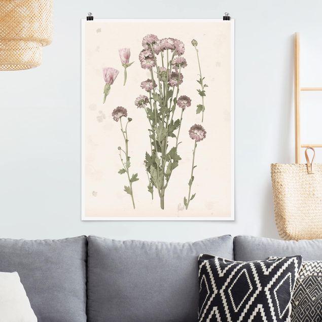 Poster - Herbarium in rosa I - Hochformat 3:4