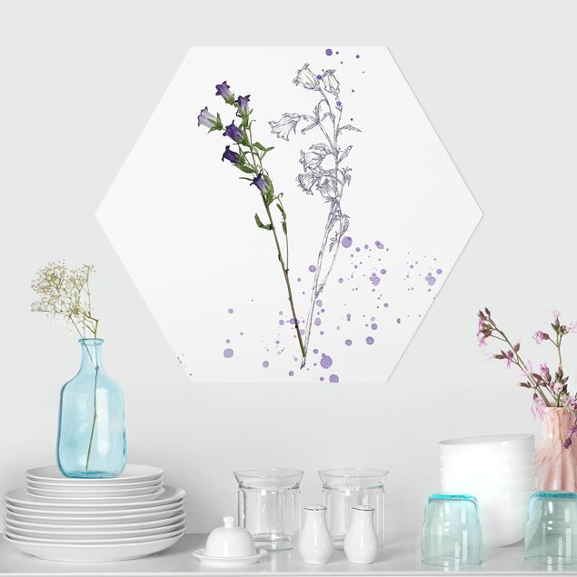 Hexagon Bild Forex - Botanisches Aquarell - Glockenblume