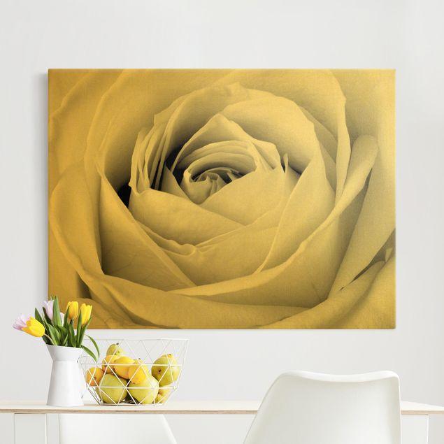 Leinwandbild Gold - Close Up Rose - Querformat 4:3