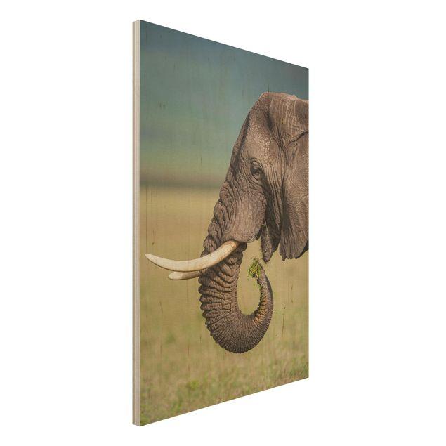 Holzbild - Elefantenfütterung Afrika - Hochformat 3:2