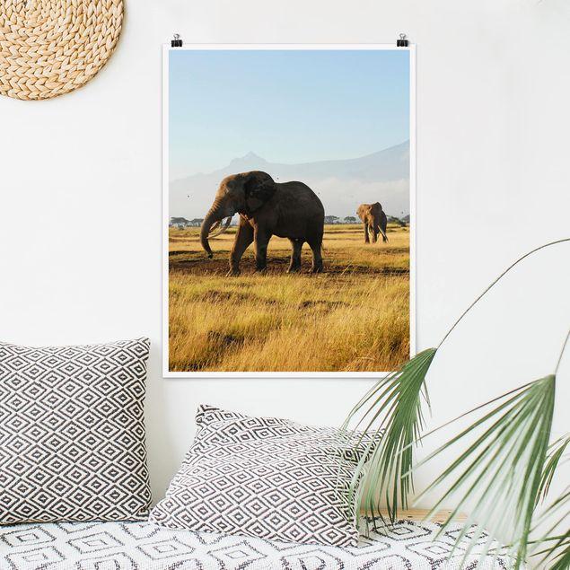 Poster - Elefanten vor dem Kilimanjaro in Kenya - Hochformat 3:4