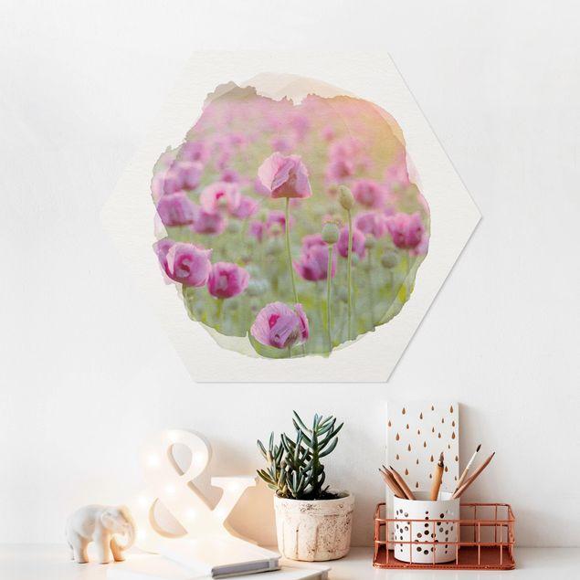 Hexagon Bild Forex - Wasserfarben - Violette Schlafmohn Blumenwiese im Frühling