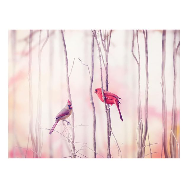 Glas Spritzschutz - Vögel auf Zweigen - Querformat - 4:3