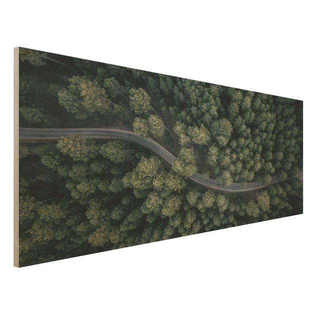 Holzbild - Luftbild - Waldstraße von Oben - Panorama