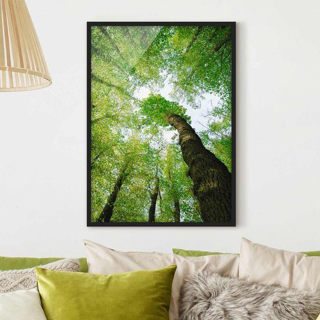 Bild mit Rahmen - Bäume des Lebens - Hochformat 3:4