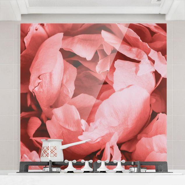 Spritzschutz Glas - Pfingstrose Blüte Koralle - Quadrat 1:1