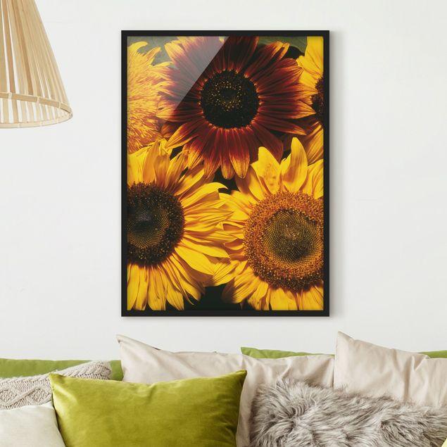 Bild mit Rahmen - Sunflowers - Hochformat 3:4