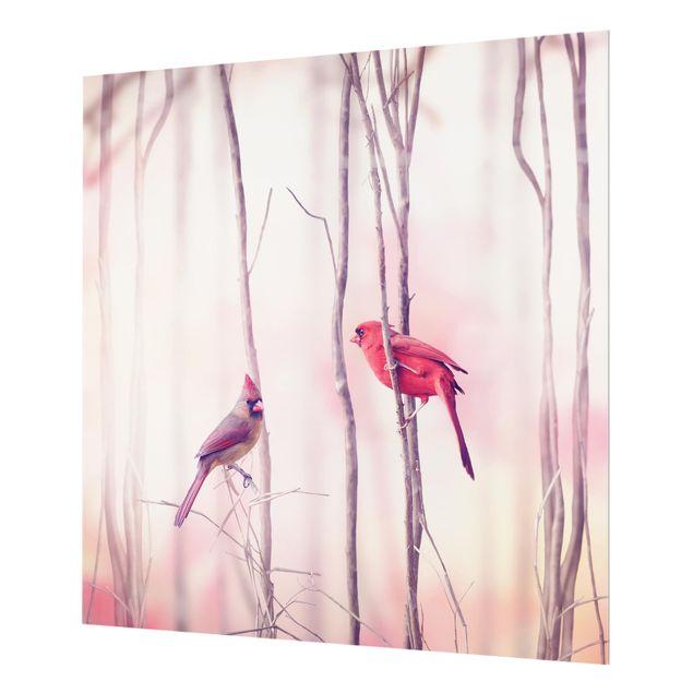 Glas Spritzschutz - Vögel auf Zweigen - Quadrat - 1:1