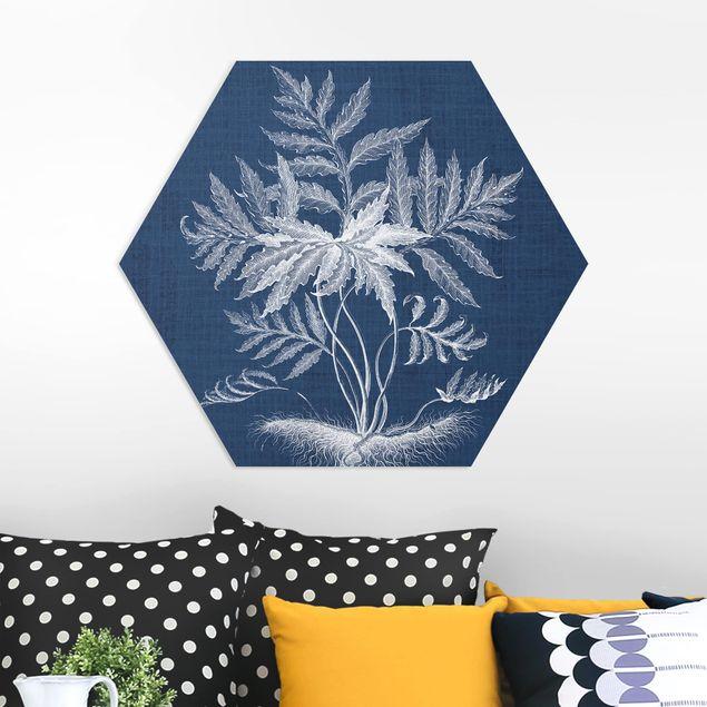 Hexagon Bild Forex - Denim Pflanzenstudie IV