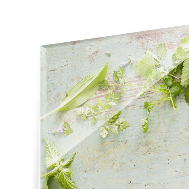 Glas Spritzschutz - Wildkräuter auf Holz - Quadrat - 1:1