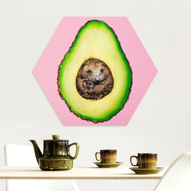 Hexagon Bild Alu-Dibond - Jonas Loose - Avocado mit Igel