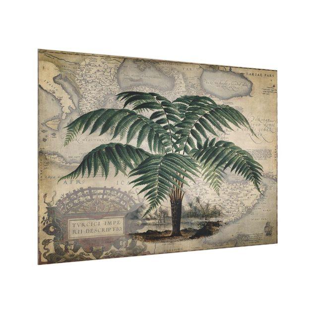 Glas Spritzschutz - Vintage Collage - Palme und Weltkarte - Querformat - 4:3