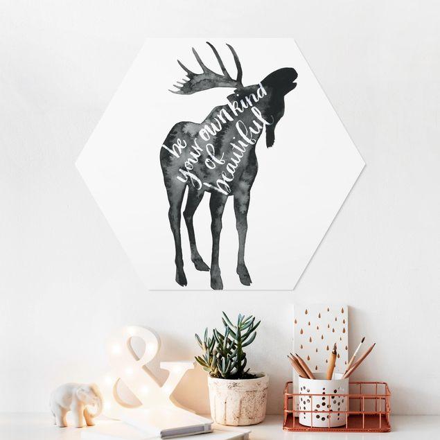 Hexagon Bild Forex - Tiere mit Weisheit - Elch