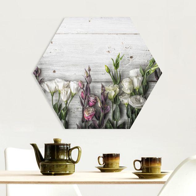 Hexagon Bild Forex - Tulpen-Rose Shabby Holzoptik