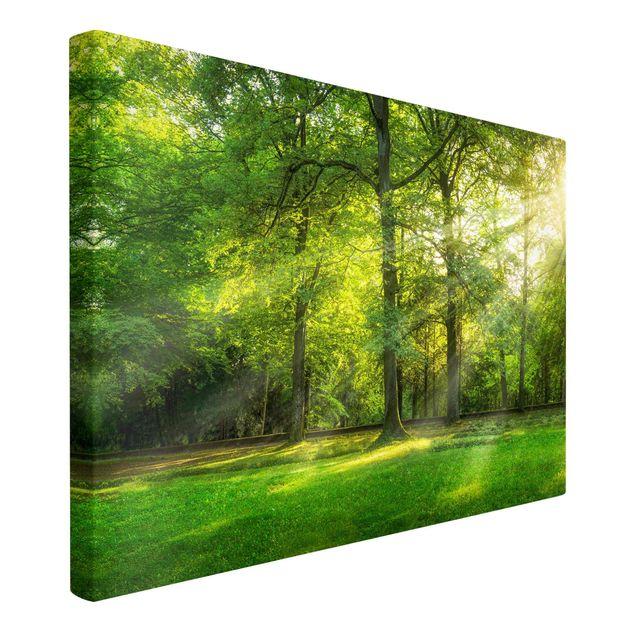 Leinwandbild - Spaziergang im Wald - Querformat 3:2